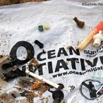 oceaninitiatives picture